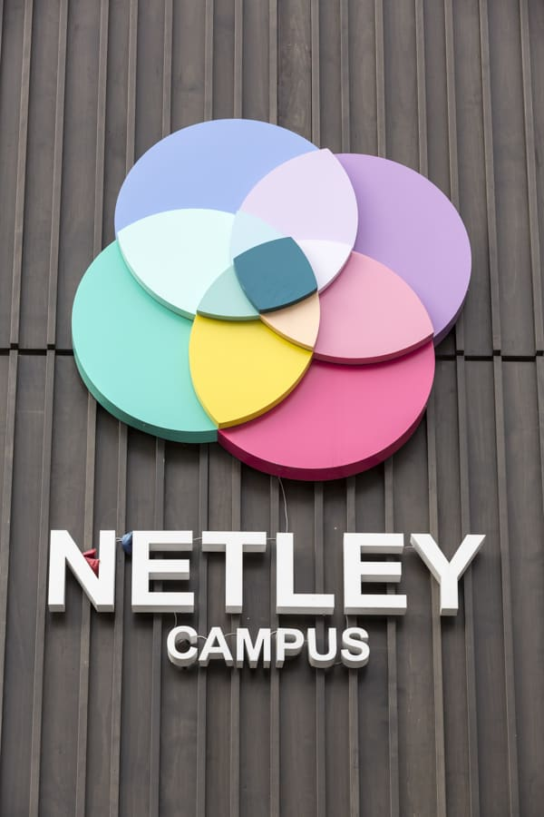 External brand identity sign for Netley Campus applied to a brown textured surface. The design consists a of petal shaped logotype made from four overlapping circles in blue, purple, pink and green, to create a further four petals where the circles overlap in varying pastel shades. The Netley Campus name is arranged underneath the logo type in individual white letters